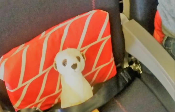 Cool tranquille dans mon fauteuil!!!