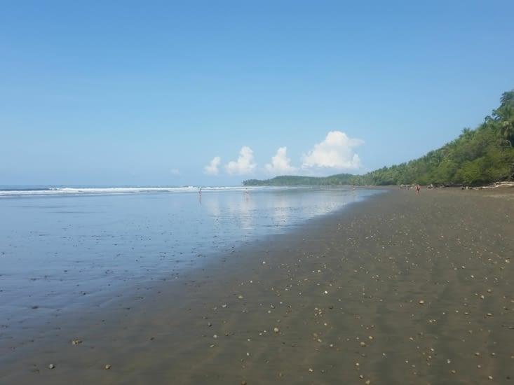 Une plage du début du monde