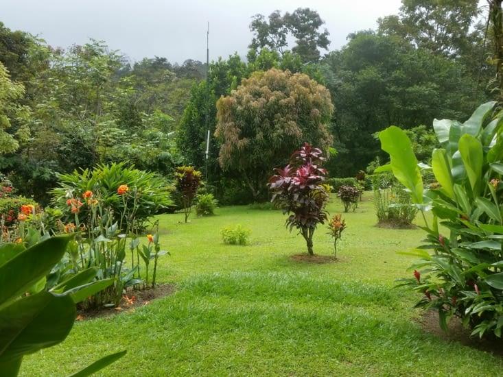 El jardin del hotel