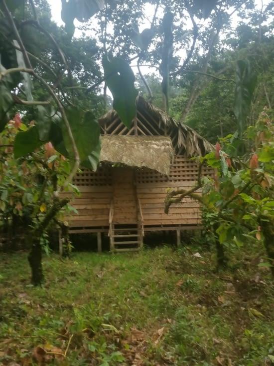 Habitation traditionelle