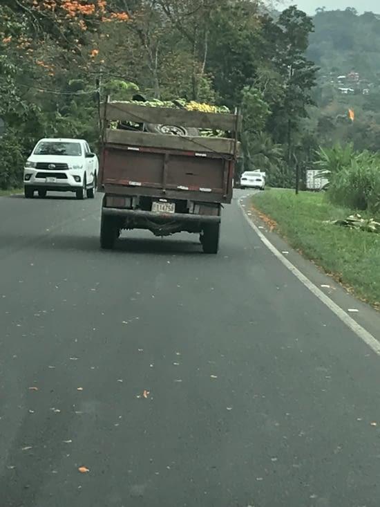 Ananas, Bananes, ou pneu, au choix !