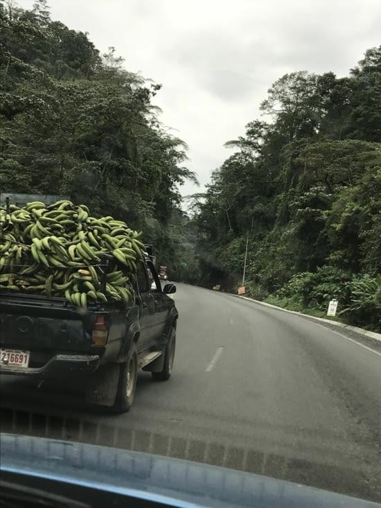 Que des bananes et on double à droite! Hop hop hop