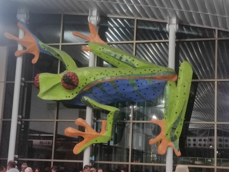 Sur le mur de l'aéroport, elle nous dit adios!