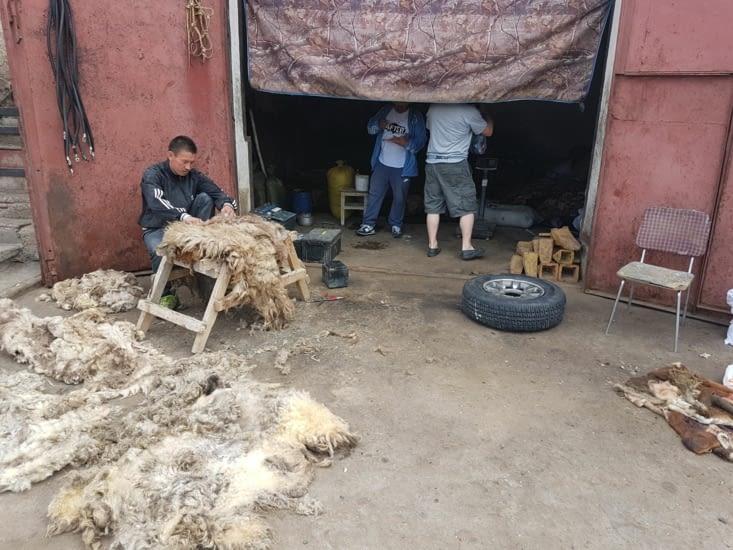 Traitement des peaux de mouton. Il ne manque que l'odeur sur la photo.