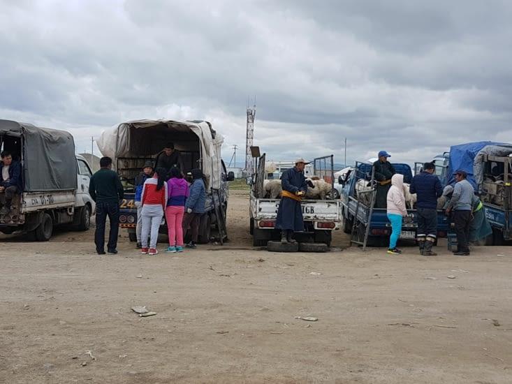 Un marché aux bestiaux le long de la route