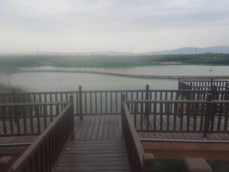 Le lac du camping