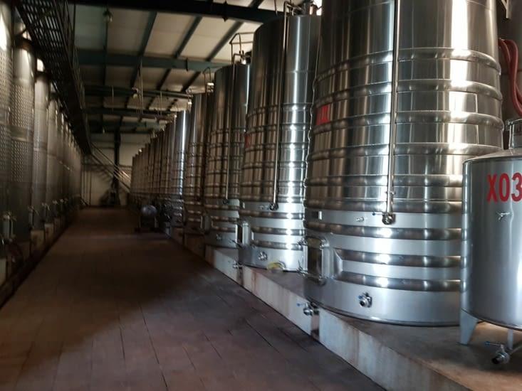 visite d'une cave viticole