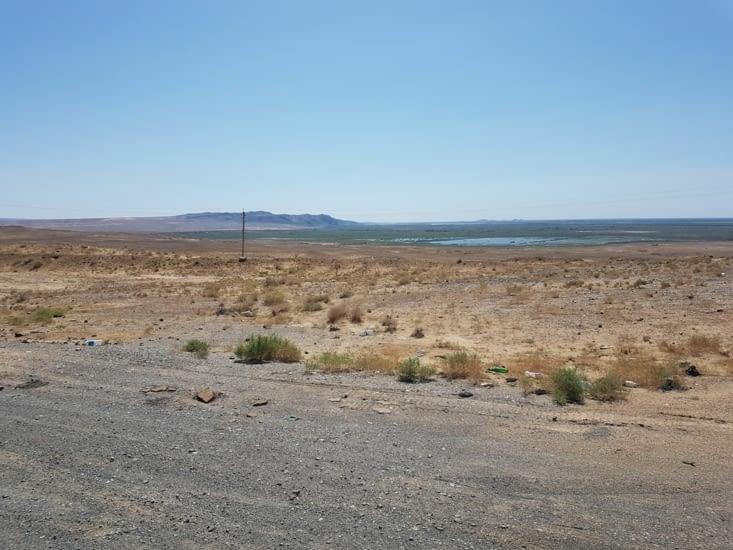 Contraste entre le désert et l'oasis
