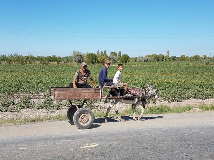 L'âne est un moyen de transport encore très utilisé dans les campagnes...et les bourgs