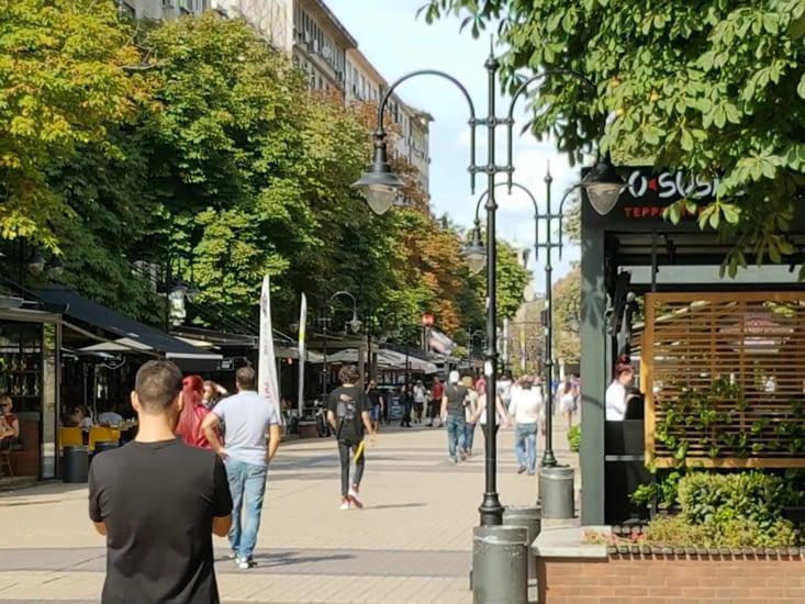 Rue piétonne animee du centre ville