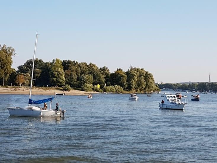 Plage sur une île à la confluence des 2 fleuves