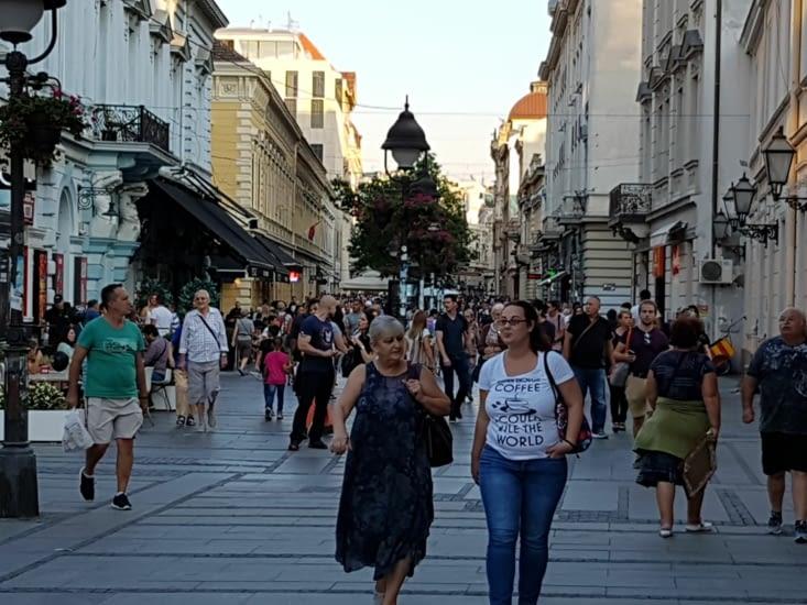 Rue piétonne du centre ville très animée