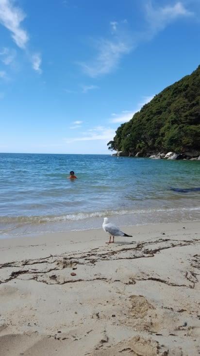 Puis baignade pout Tiago ! L'eau est fraîche!