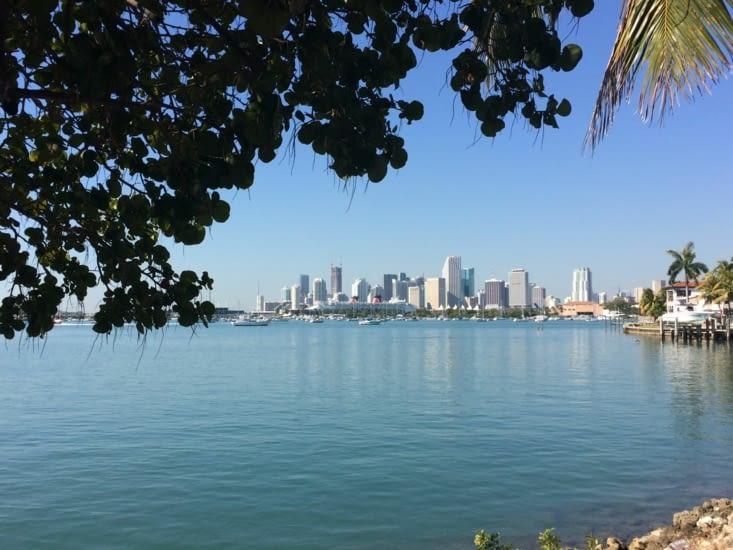 Vue sur Downtown Miami