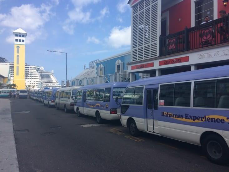 Minibus attendant la descente des croisiéristes