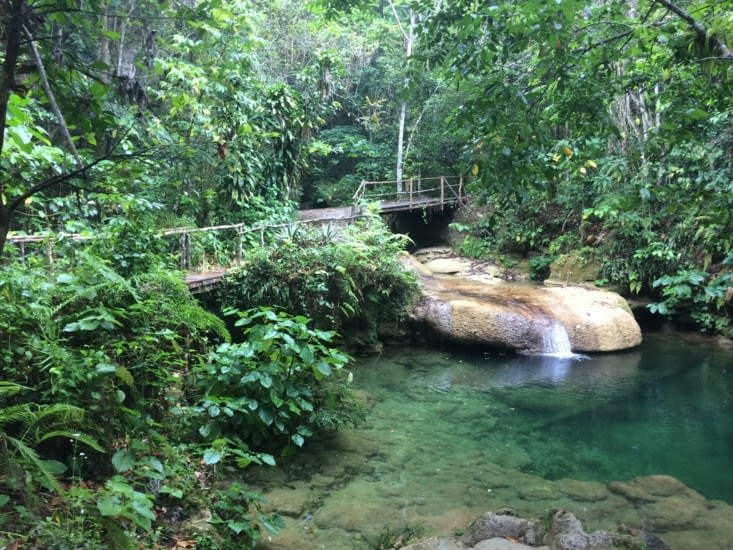 Un premier bassin, à l'entrée du parc