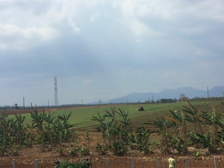 Agriculteur au travail sur la route de Viñales