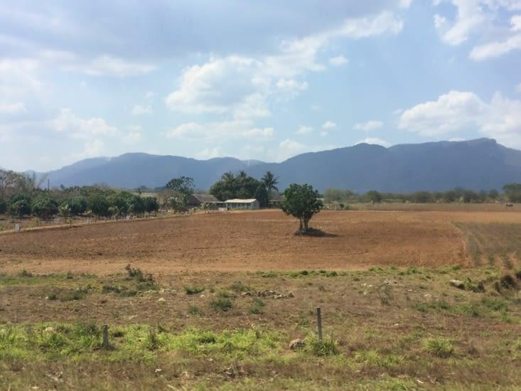 Petite ferme sur la route de Viñales