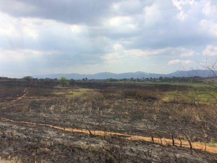Ici aussi, des paysages ravagés par les flammes