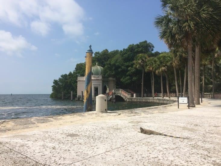 Un iguane se pavanant devant la villa Vizcaya
