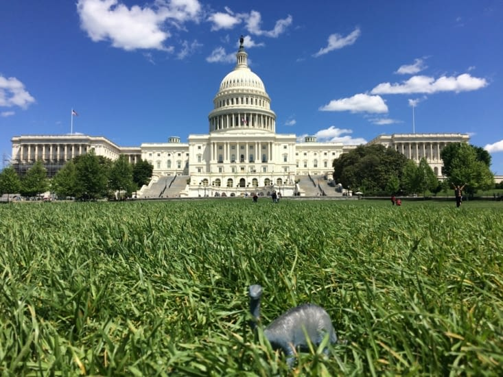 Petit-Pas en mode « selfie » devant le Capitole
