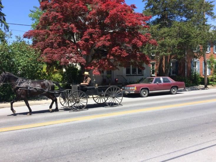 Amish pensif dans les rues de Strasburg