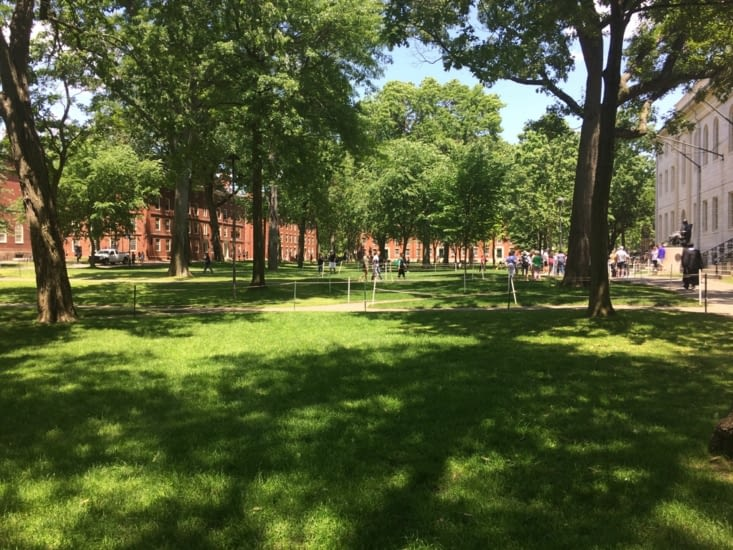 Le parc Harvard Yard