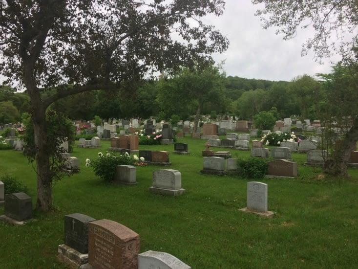 Le cimetière Notre-Dame-des-Neiges
