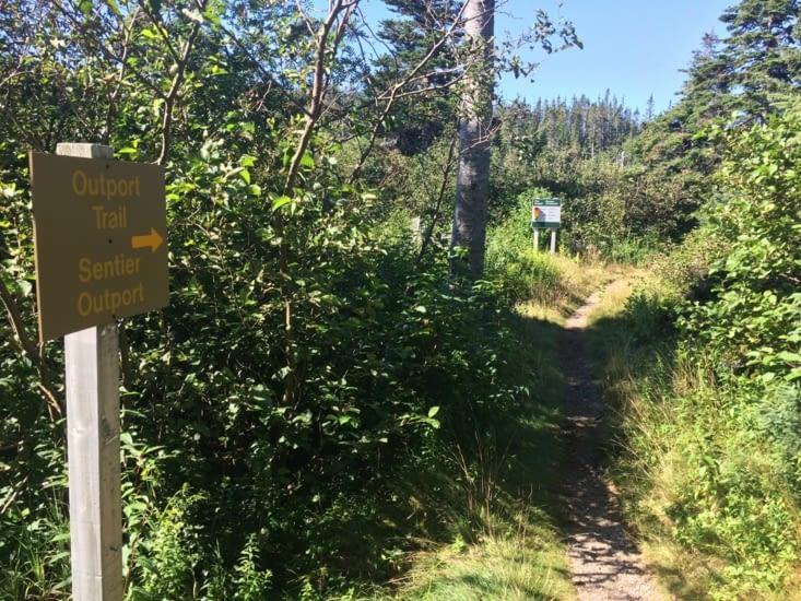Début de l'Outport Trail