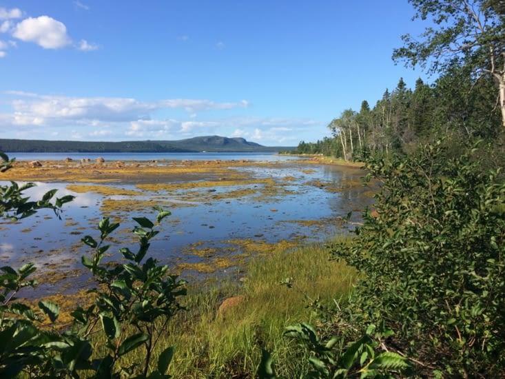 Le parc national Terra-Nova, à marée basse