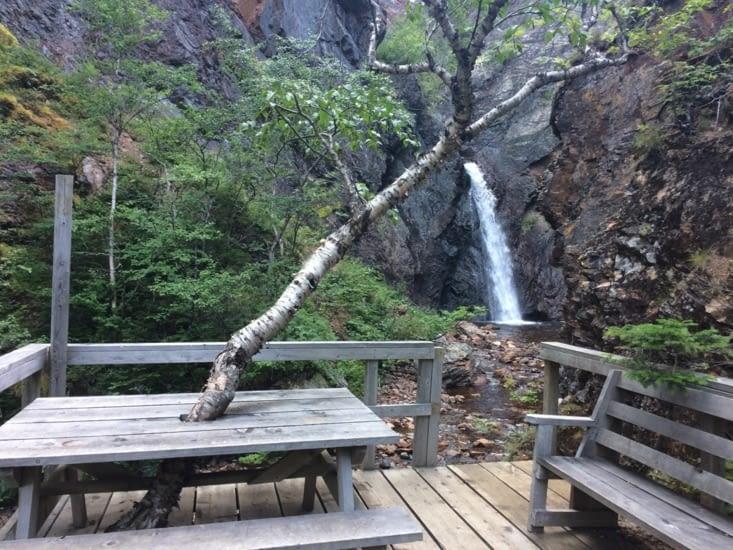 Alexander Murray Hiking Trail