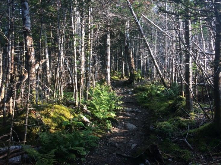 James Callaghan Trail