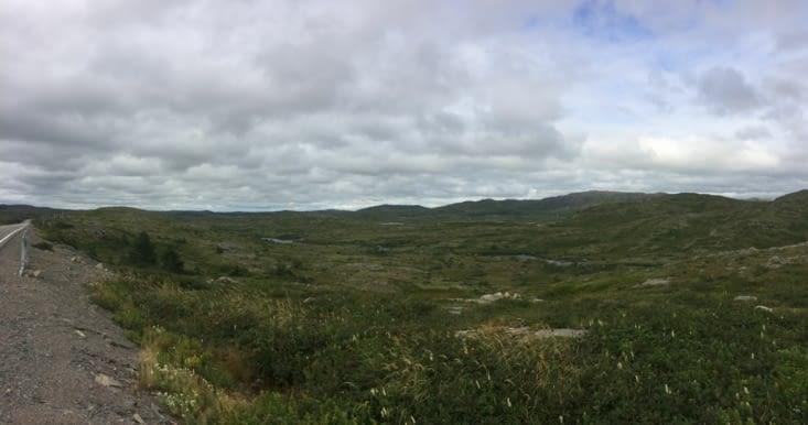 Paysage typique de Terre-Neuve