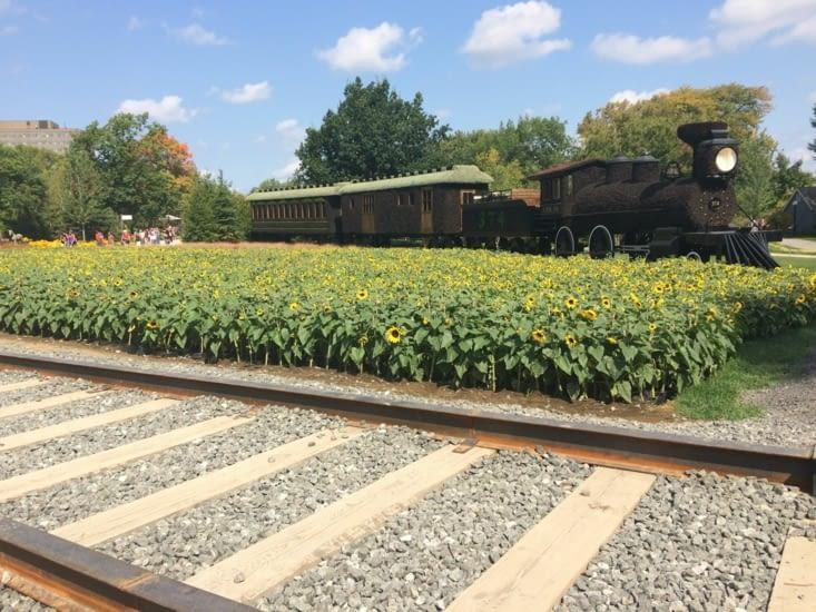 En voiture ! - La locomotive CPR 374