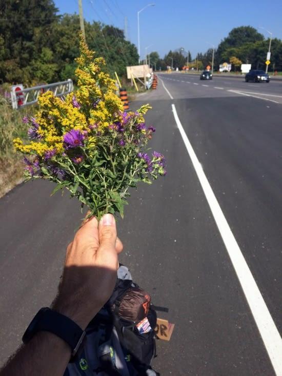 J'ai même essayé le bouquet de fleurs !