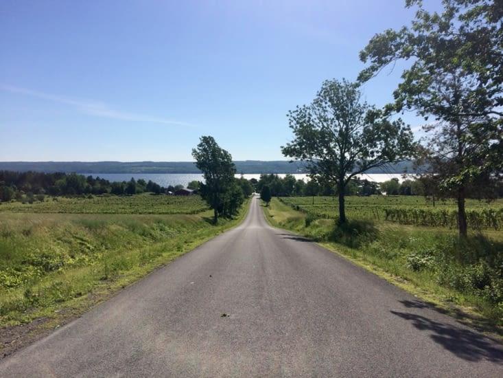Vignoble dans les Finger Lakes