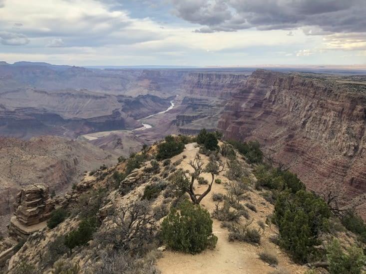 Grand Canyon depuis Navajo Point