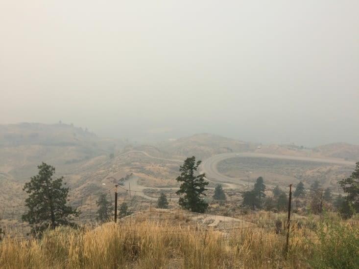 Vue désolante depuis Anarchist Mountain Lookout