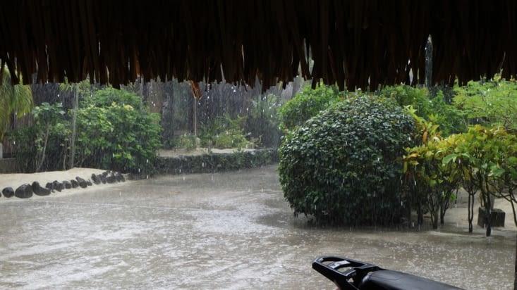 Petite averse tropicale...