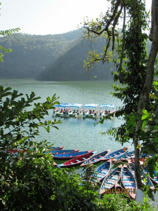 Le lac de Pokhara, la vue des barques nous motive ...
