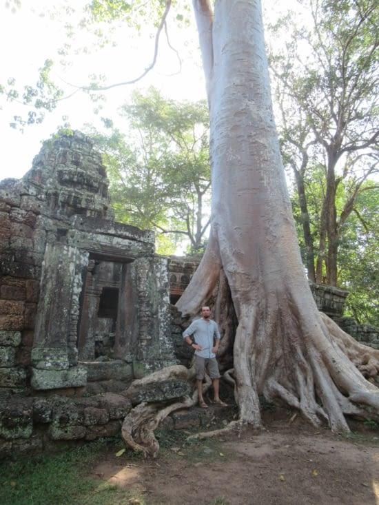 Banteay Kdei - avec un fromager (arbre) encore plus imposant que le monastère