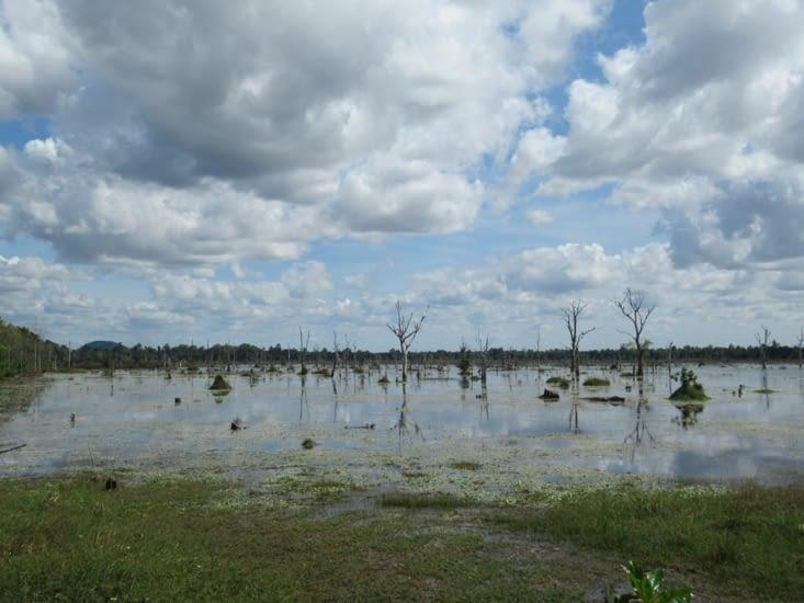 Grand réservoir, qui fût en partie asséché, Baray oriental