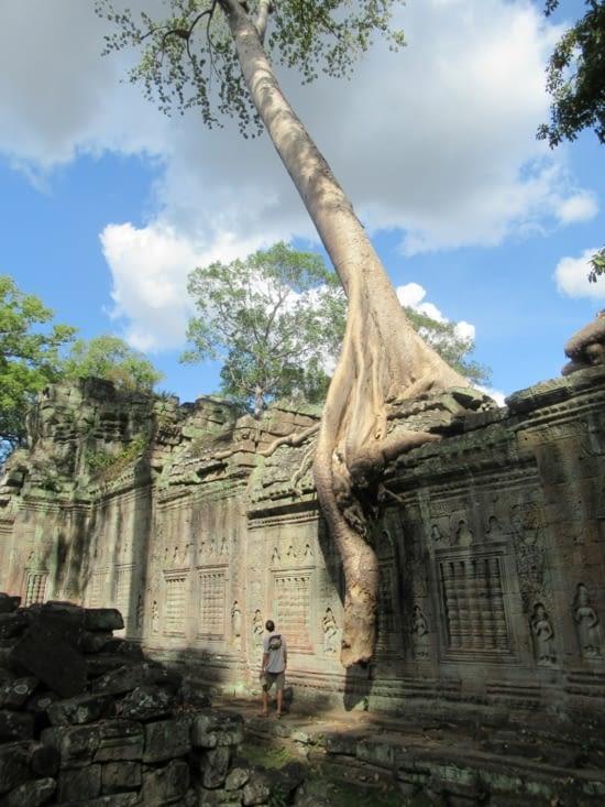 Preah Khan, complexe monastique bouddhique construit vers 1200