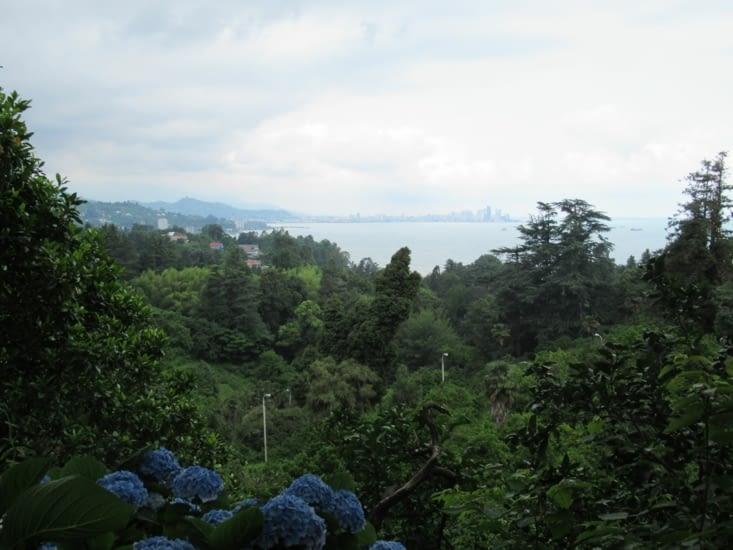 Jardin botanique - vue panoramique