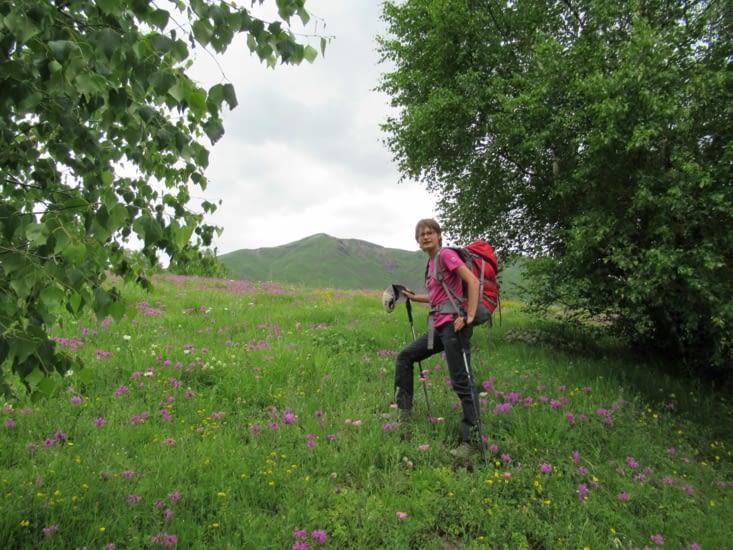 On retrouve les jolies fleurs roses violettes du premier jour de la rando