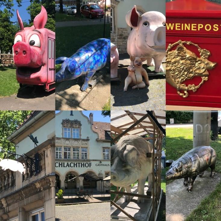 Musée du cochon