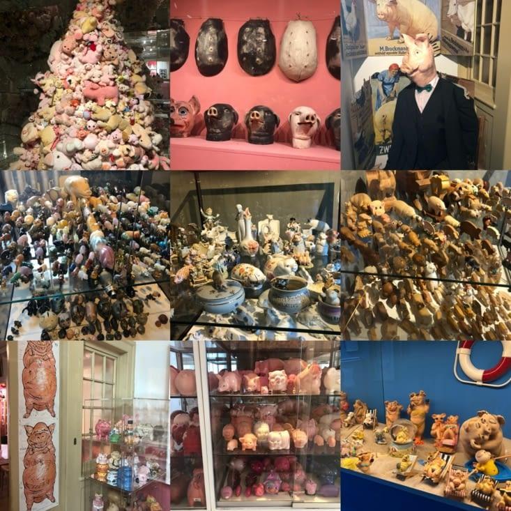Musée du cochon encore