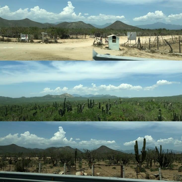Route entre Cabo et La Paz