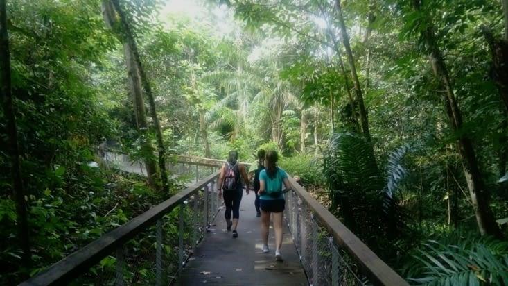 Macritchie Reservoir, rencontre avec trois singapouriennes