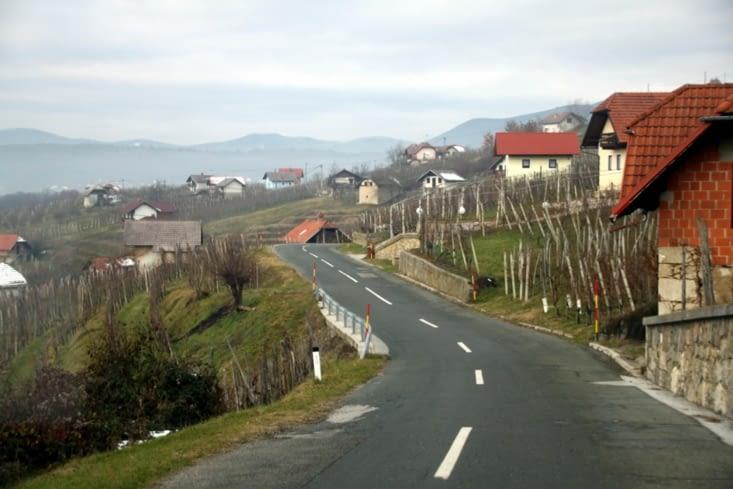 Les préalpes slovènes sont connues pour la culture de la vigne.